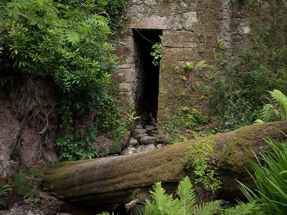http://www.bertrandcarriere.com/files/gimgs/th-73_071_scotland_B.jpg