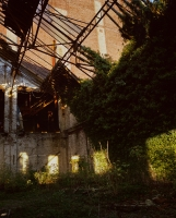 http://www.bertrandcarriere.com/files/gimgs/th-10_23_lieuxmemes.jpg